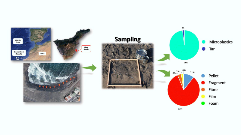 New article accepted in Marine Pollution Bulletin